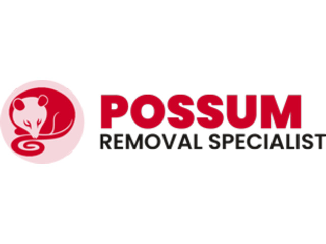Hire Australia's #1 Possum Removal Specialist at Low Cost - 1