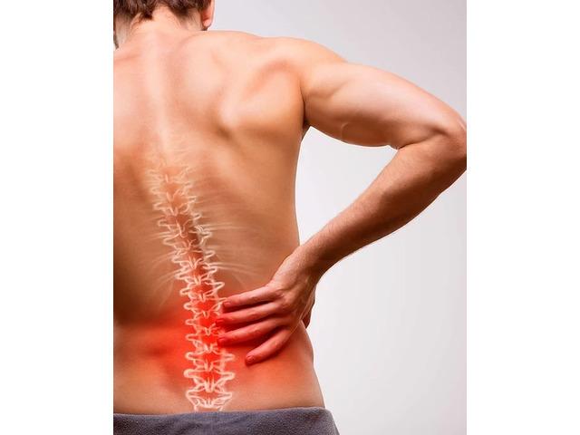 Chiropractors, Chiro in Surrey Hills, Bendigo, Torquay | Sexton Chiropractic - 6