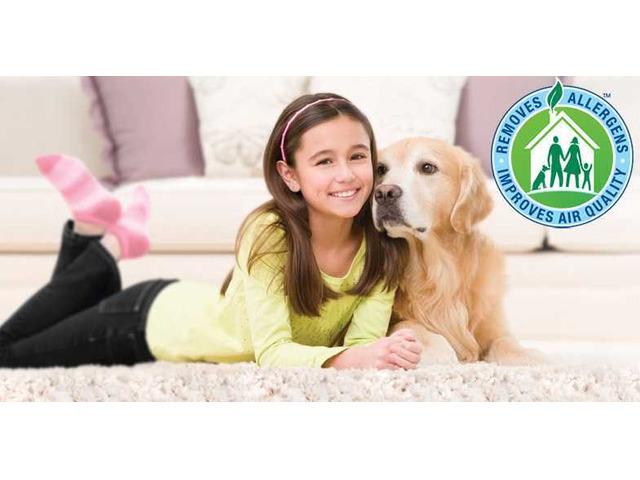 Carpet Cleaners Bunbury | 0488 950 833 - 1
