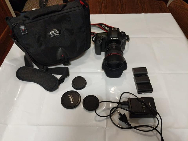 Canon EOS 5D Mark III with Canon EF 24-105mm f/4L IS USM Lens - 5