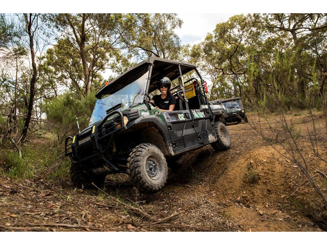 Looking For Buggy Tour In Queensland - Landcruiser Mountain Park - 2
