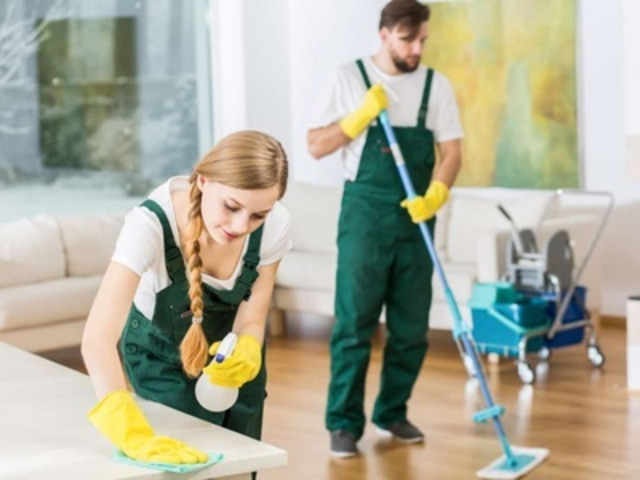 Specialized Carpet Cleaning Melbourne | MDS Cleanings - 2