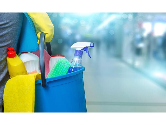Specialized Carpet Cleaning Melbourne | MDS Cleanings - 3