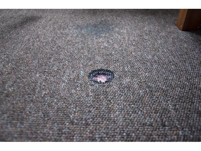 Carpet Repair Services in Sunshine Coast - Best Carpet Fixing Service in Sunshine Coast - 2