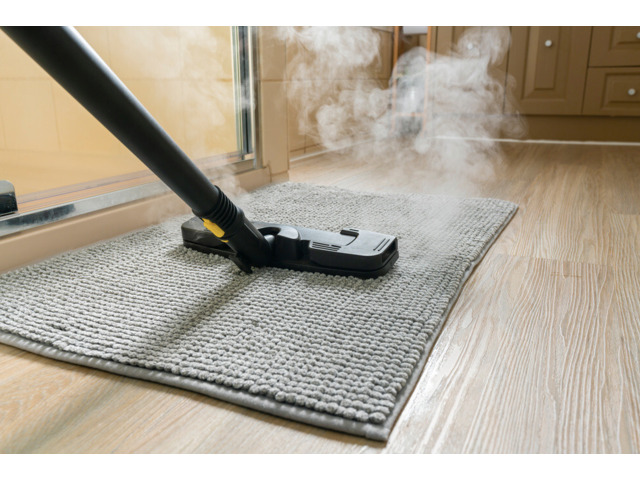 Most Reliable Carpet Mould Removal Hobart - 1
