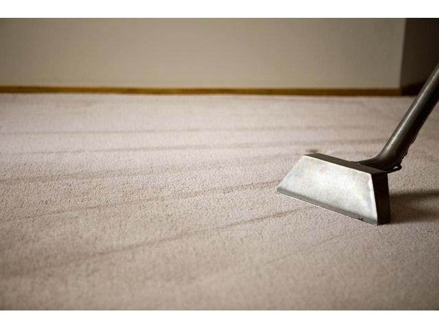 Looking for Dry Carpet Cleaning in Melbourne? - 1