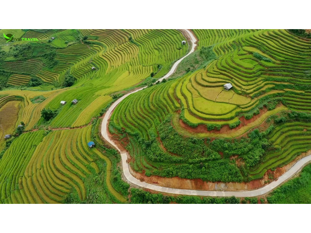 Classic tours Vietnam – Choose the best services for a flawless travel - 1