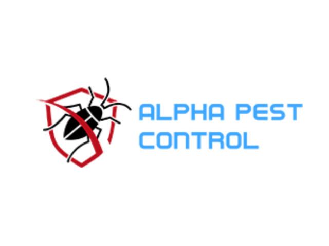 Pest Control In BriarHill - 1