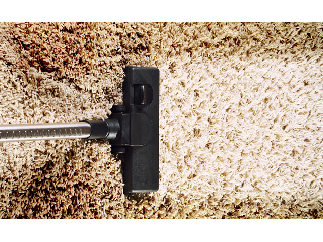 Looking for a Dry Carpet Cleaning in Canberra? - 1