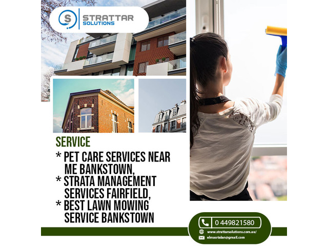 Pet Care for your Furry Ones Bankstown | Strattar solutions - 1