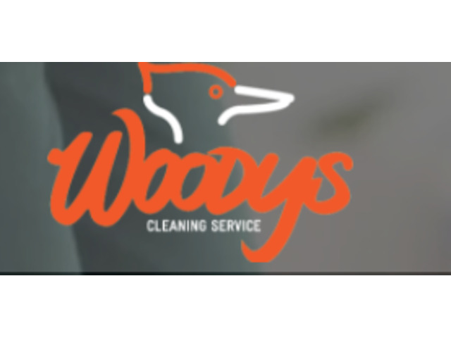 Cleaning Services Company - 1