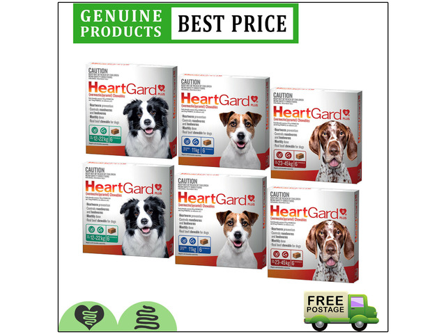 HEARTGARD Plus 12 Doses Heartworm & Worms Control Chewable For Dogs All Sizes - 1