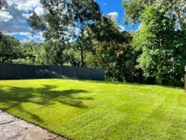 Massive yard raise into an oasis -Turf - 1