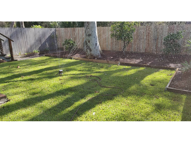 Landscaping in Lots - Turfing and gardens - 6