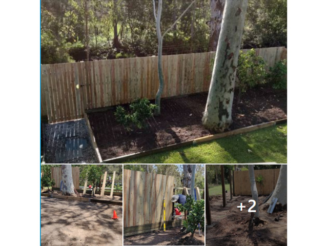 Landscaping in Lota- Fencing - 1