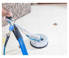 Carpet Cleaning and Pest Control Brisbane | 0416 621 444