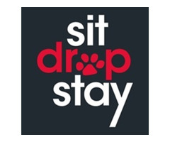 SitDropStay