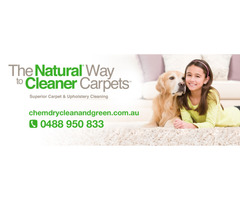 Bunbury Carpet Cleaners| 0488 950 833
