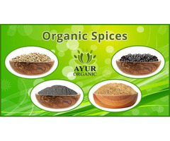 Buy Premium Quality Spices and Herbs