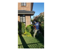 Find the Exceptional Gardening Services in Lindfield
