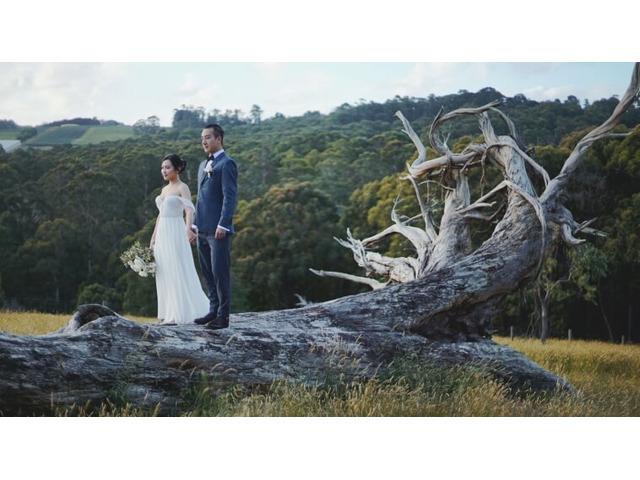 Best Wedding Video Melbourne - Lensure - 1