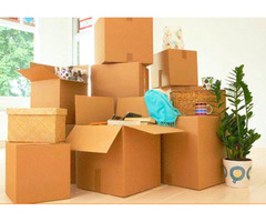 Professional Furniture Removalist in North Shore - No Worries Removals