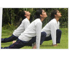 Book Seats For SYF's 200 Hour Yoga Teacher Training Course