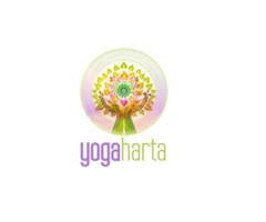 Yoga Training Classes for Beginners