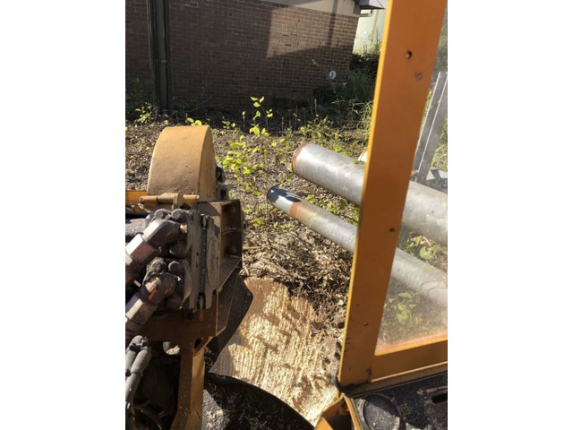 Trip no More with Professional Tree Stump Removal Service - 3