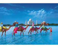 India Tourism Packages Booking Now