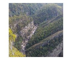 One Day Leven Canyon, Gunns Plains Cave OR Wildlife Tour