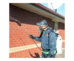 Complete Pest Control Services in Melbourne