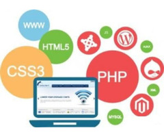 Customized & Responsive Website Designing & Development