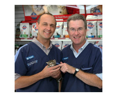 Professional Pet Care At North Ryde Vet!