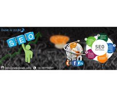 Astonishing 50% Discount offer on professional Website Optimization.