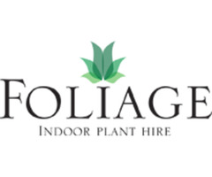 Indoor Plants Hire in Melbourne for Office Plant
