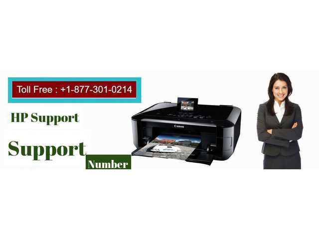 Dial Our HP Printer Support Number if your printer is not working well - 1