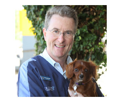Quality Vet Services At North Ryde Vet!