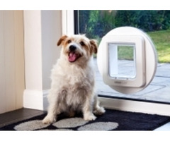 Want To Gift A Good Pet Door To Your Beloved Furry Friend?