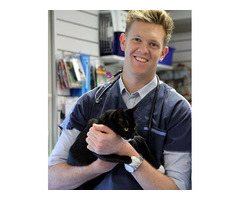 Experienced North Shore Vet Staff For Your Pet Care Needs
