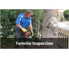 Termites Greensborough