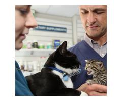 Visit Turramurra Vet - Full Range Pet Service Provider