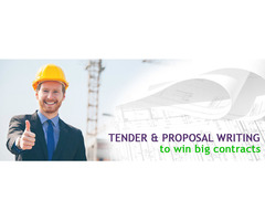 Tender Writing Template