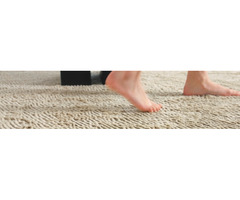 Best Carpet Cleaning Service in Adelaide