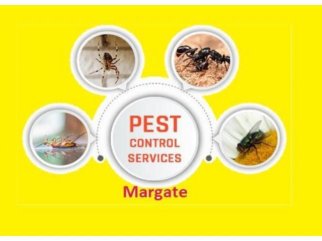 Pest Control Margate - 1