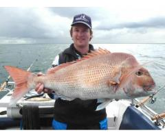 Best Fishing Spots in Melbourne - Image 3