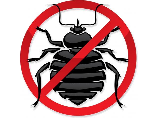 Pest Control Ringwood North - 1