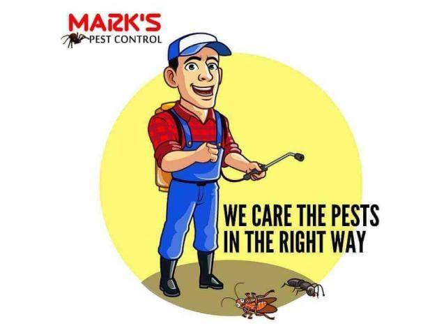 Pest Control Canning Vale - 1