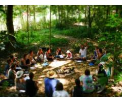 Get Permaculture Education In Australia - Image 1