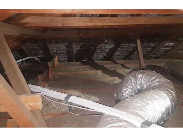 Insulation Removal in Adelaide - 1